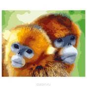 """Раскраска по номерам """"Забавные обезьянки"""""""