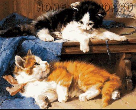 """Раскраска по номерам """"Котята"""""""