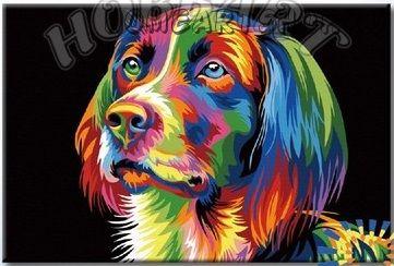 """Картина по номерам """"Ваю Ромдони. Радужный пёс"""""""