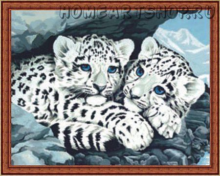 """Картина по номерам """"Снежные леопарды"""" 30х40"""